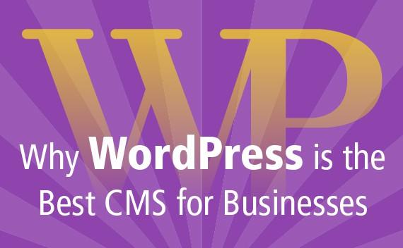 wordpress best cms for business